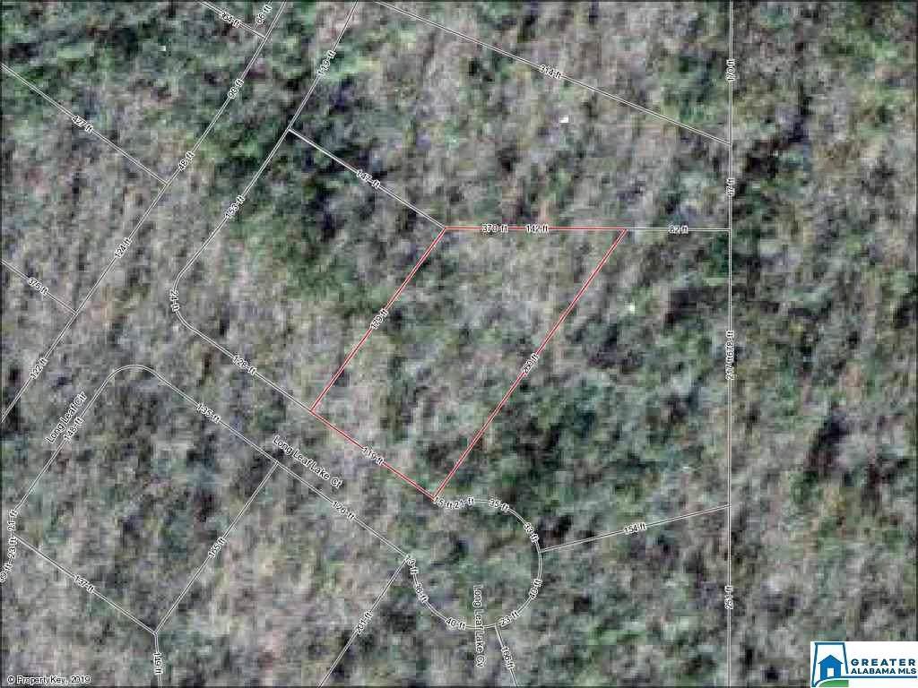 3005 Long Leaf Lake Ct - Photo 1