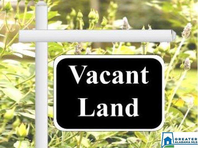 1825 River Rd 1 Lot, Gardendale, AL 35071 (MLS #865446) :: Gusty Gulas Group
