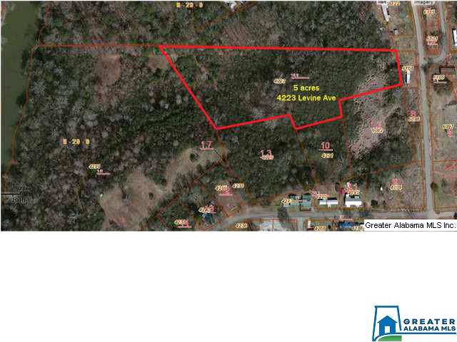 4223 Levine Ave 5ACRES, Graysville, AL 35073 (MLS #866279) :: Bentley Drozdowicz Group