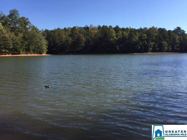 Co Rd 228 #4, Wedowee, AL 36278 (MLS #867017) :: Gusty Gulas Group