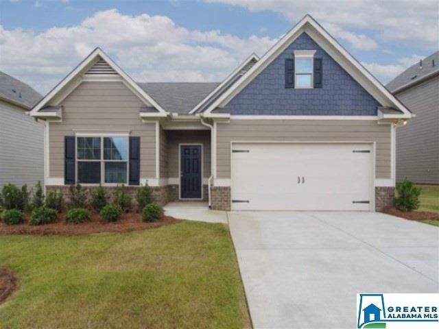 313 Farmingdale Ln, Harpersville, AL 35078 (MLS #867275) :: Josh Vernon Group