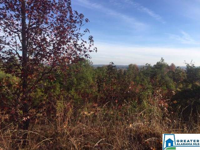 0 Co Rd 435 - Photo 1