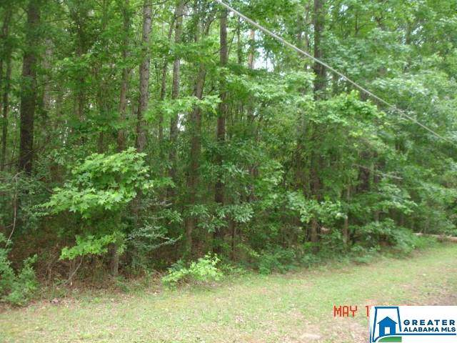 2 Co Rd 69 #1, Clanton, AL 35045 (MLS #869328) :: LIST Birmingham