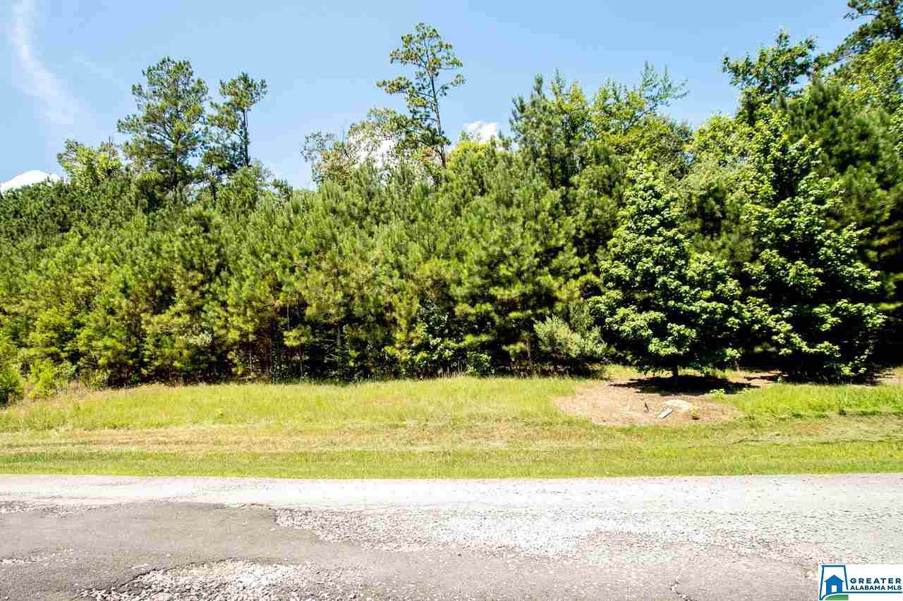 3040 Green Valley Rd - Photo 1