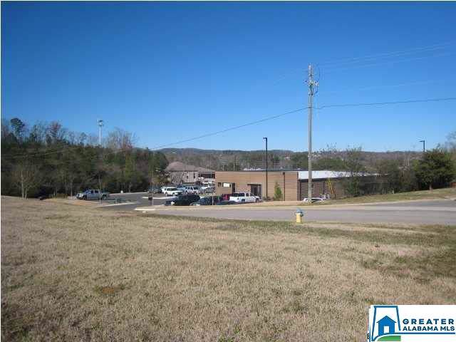 532 Simmons Dr, Trussville, AL 35173 (MLS #871713) :: Josh Vernon Group