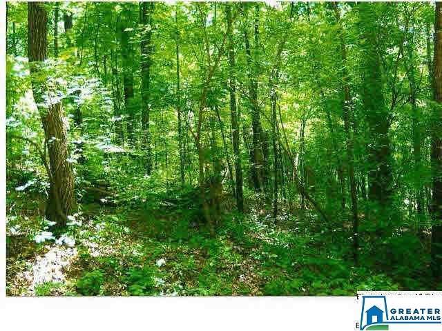 Camp Creek Rd #1, Cropwell, AL 35054 (MLS #872262) :: Josh Vernon Group