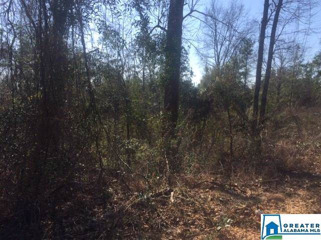0 Co Rd 340 #1, Maplesville, AL 36750 (MLS #872401) :: LocAL Realty