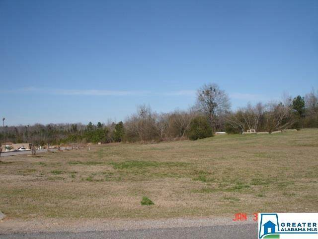 0 Co Rd 490 - Photo 1