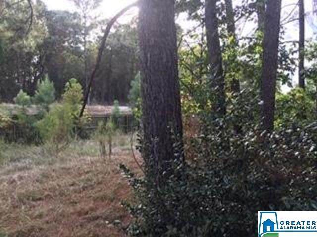 5210 Sicard Hollow Rd - Photo 1