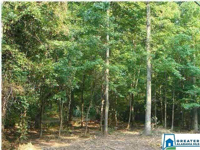 8880 Sharit Dairy Rd 1.5 ACRES, Gardendale, AL 35071 (MLS #875140) :: LocAL Realty