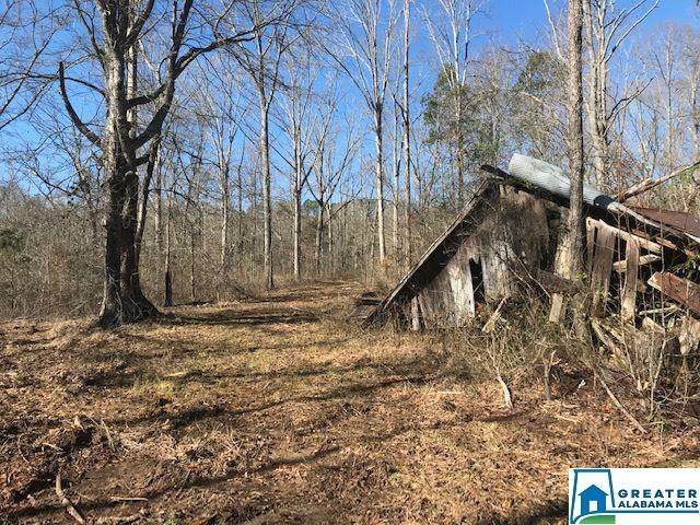 1001 Co Rd 11 - Photo 1