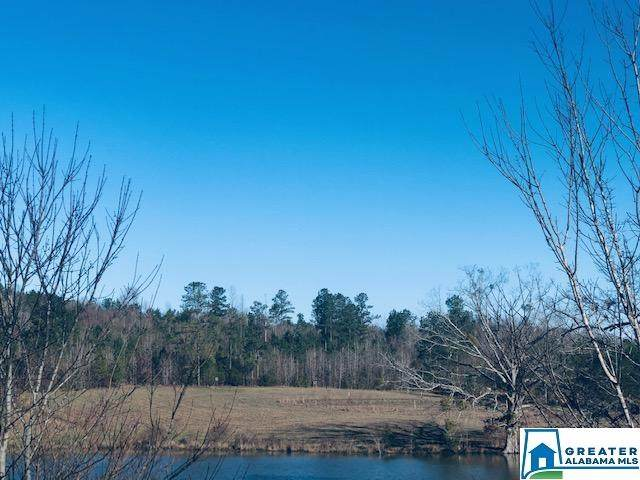00 Rocky View Rd None, West Blocton, AL 35184 (MLS #876762) :: Gusty Gulas Group