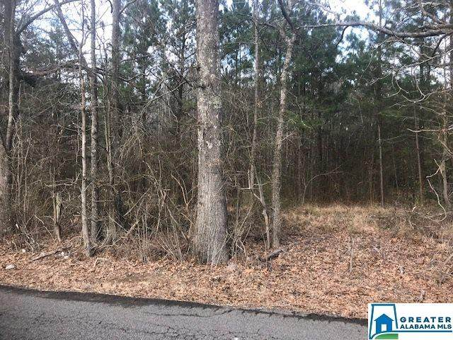 0001 Cannie Phillips Rd Lot 1, Sumiton, AL 35148 (MLS #877257) :: Sargent McDonald Team