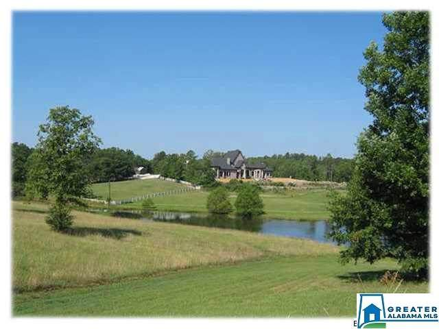 584 Meadow Lake Farms, Calera, AL 35040 (MLS #878382) :: Josh Vernon Group