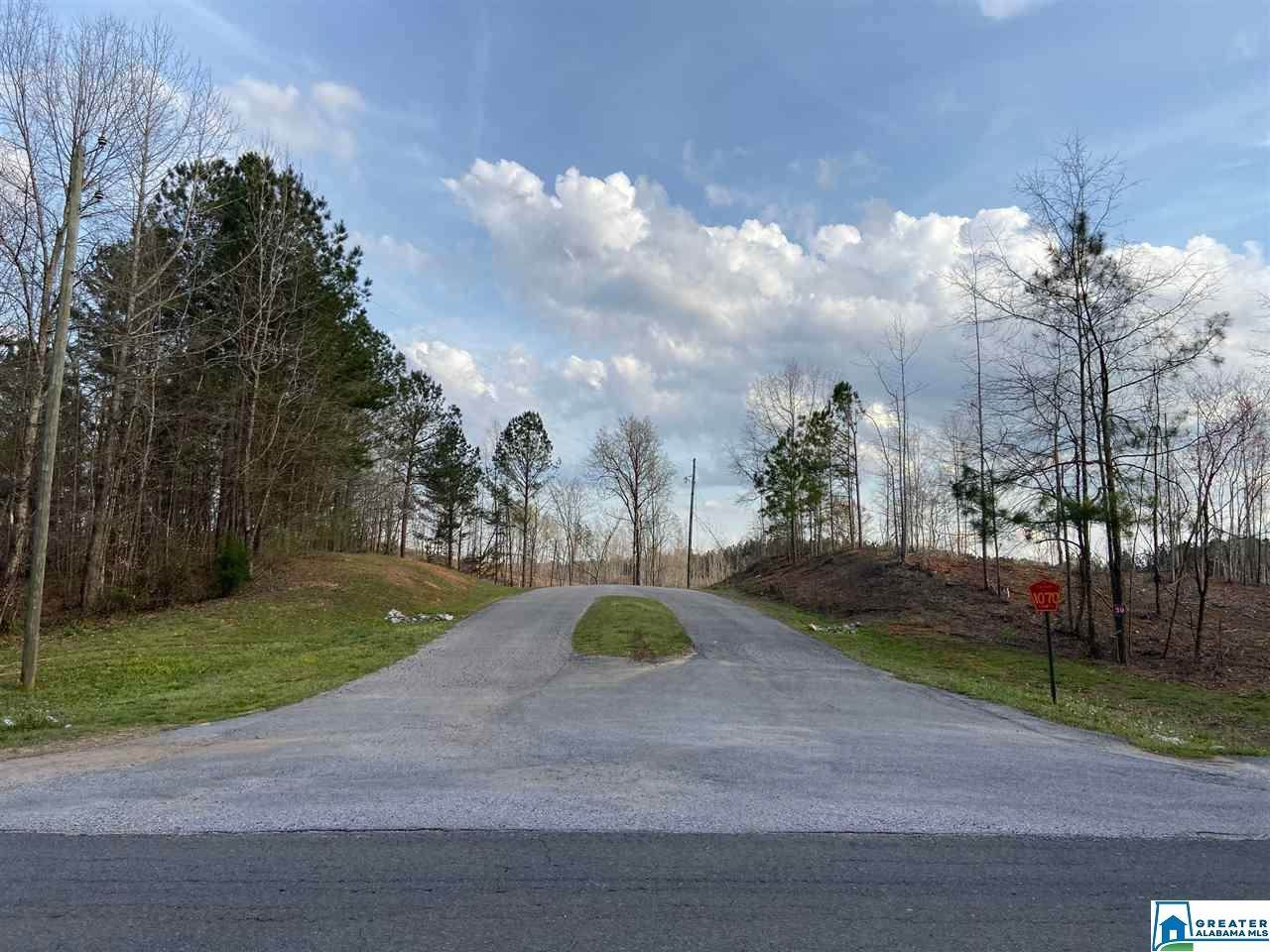 87 Co Rd 1070 - Photo 1