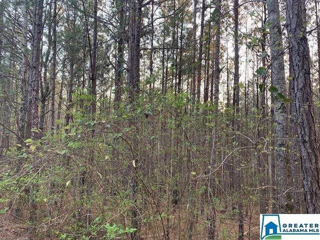 1125 Jimmy Brown Rd #0, Hamilton, AL 35570 (MLS #878898) :: LIST Birmingham