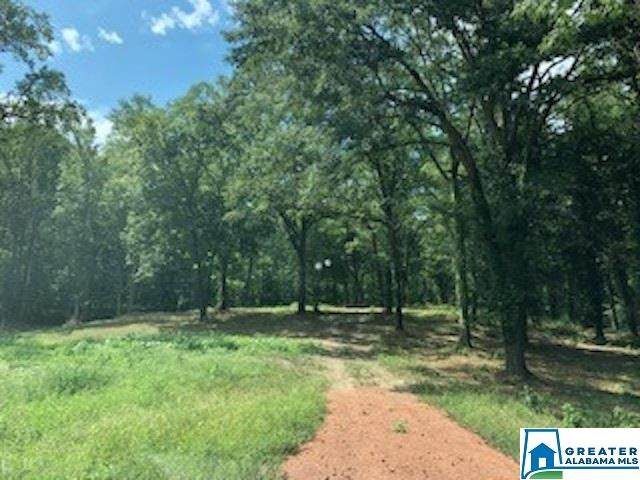 7007 Hwy 13 #13, Helena, AL 35080 (MLS #879213) :: LocAL Realty