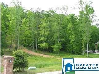 21 Oak Forest Dr Lot 21, Pelham, AL 35124 (MLS #879601) :: Gusty Gulas Group