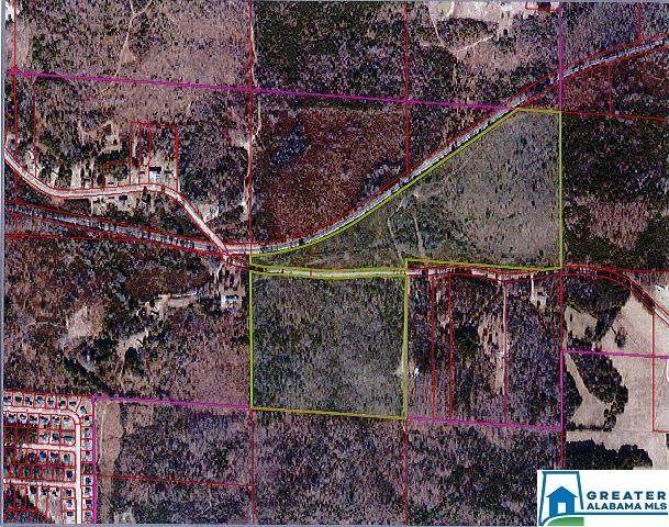 1661 Bishop Truss 77 Acres, Lincoln, AL 35096 (MLS #879761) :: LIST Birmingham