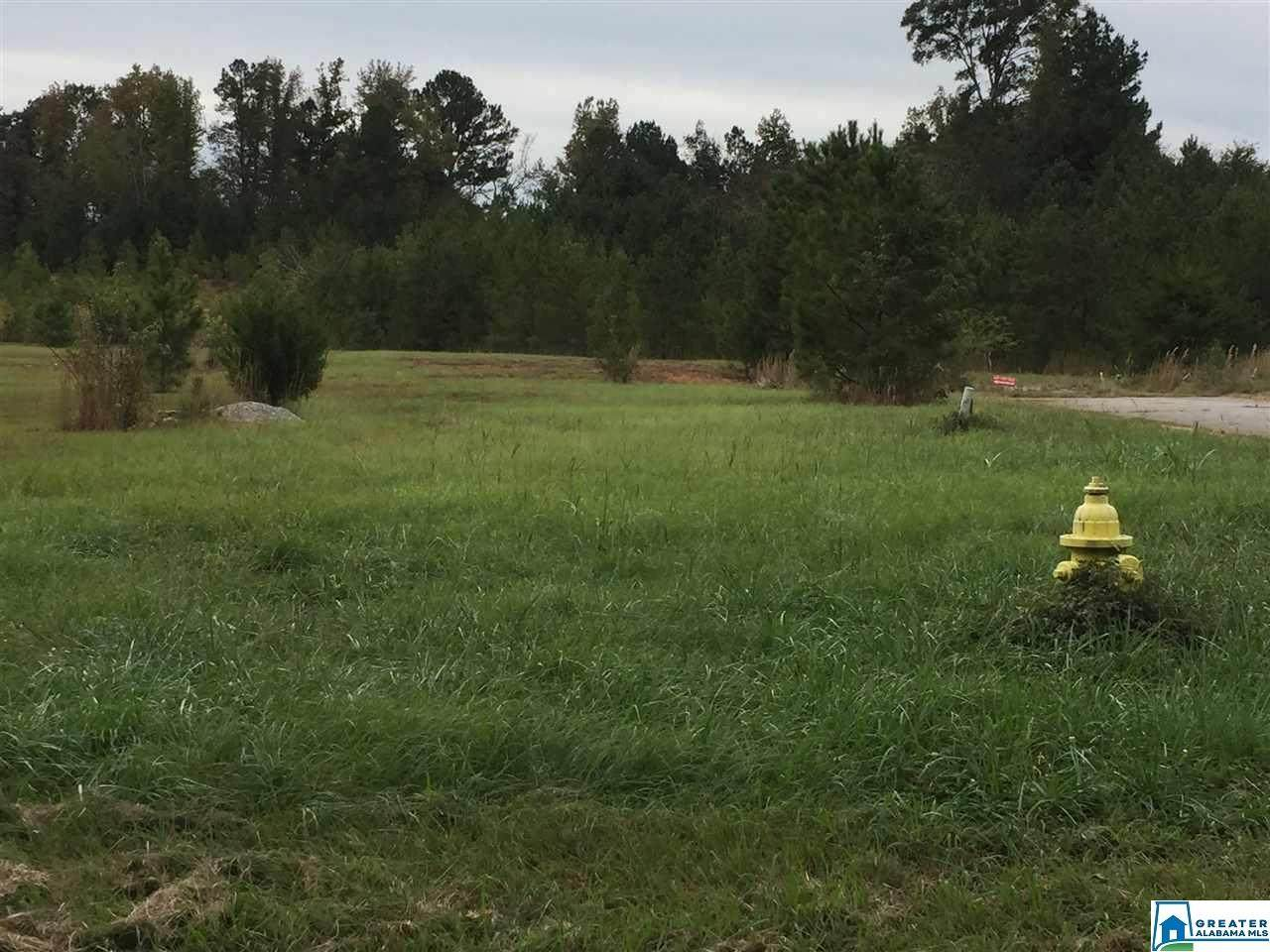 lot 36 Whippoorwill Ln - Photo 1