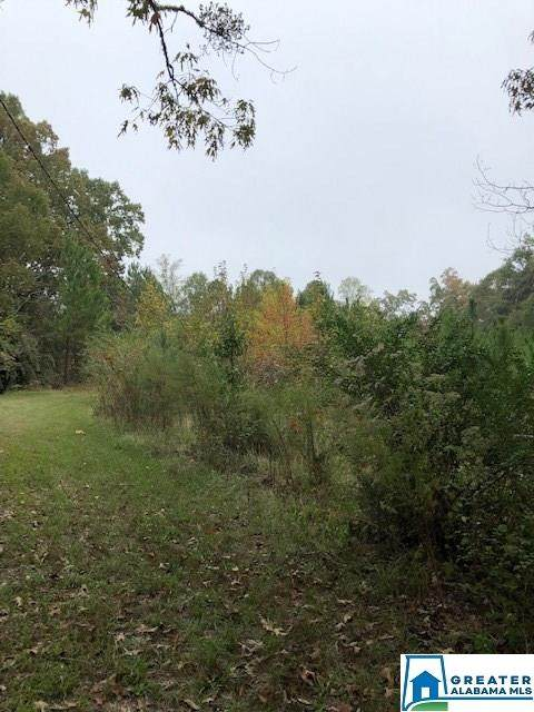 20 acres Country Club Rd - Photo 1