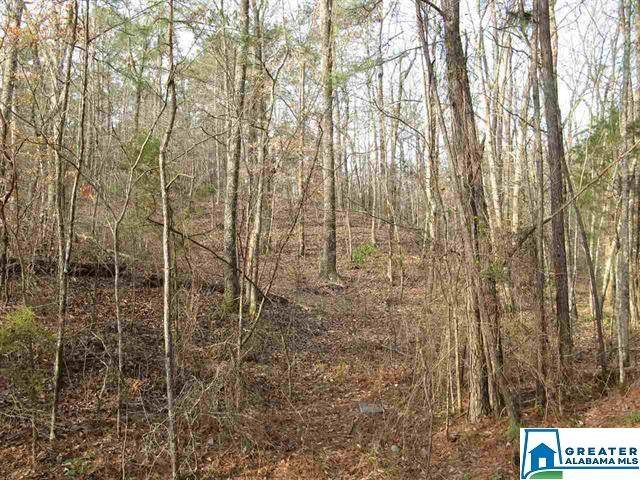 Crain Ln 2+ Ac., Sylacauga, AL 35151 (MLS #880202) :: Bentley Drozdowicz Group