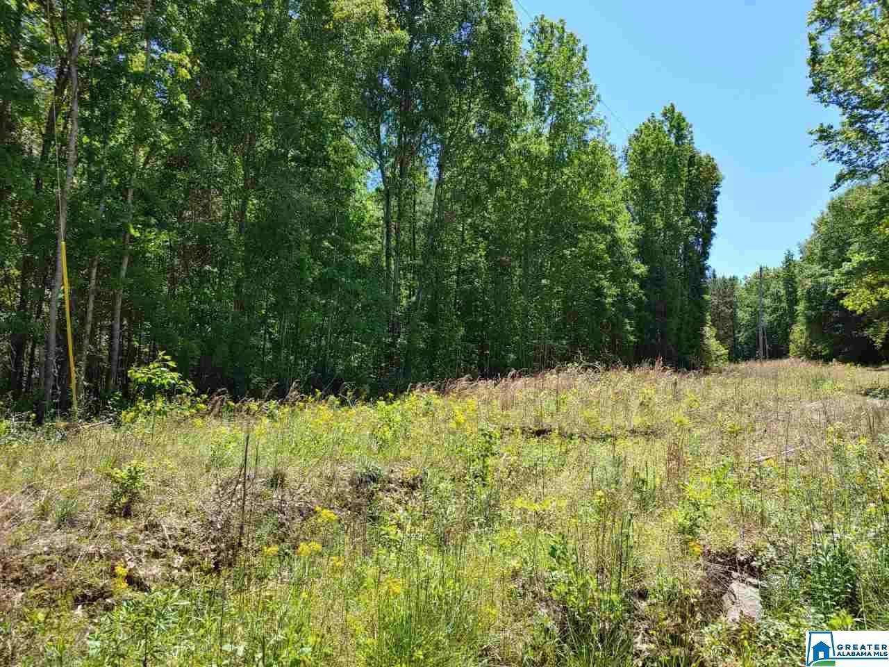 699 Co Rd 878 - Photo 1