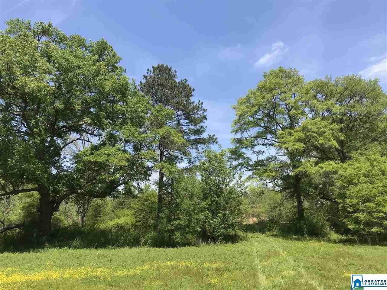 1 Oak Haven Trl - Photo 1