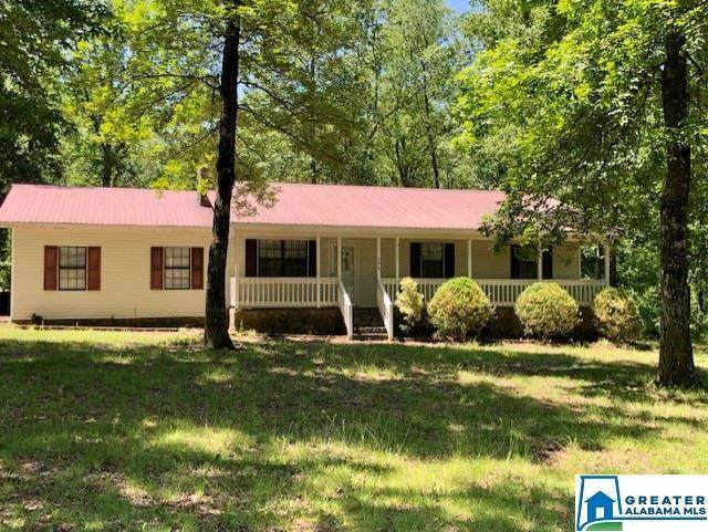 498 Mountain Brow Dr, Oneonta, AL 35121 (MLS #885176) :: Bailey Real Estate Group