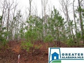 7996 Forest Loop #1, Pinson, AL 35126 (MLS #885822) :: JWRE Powered by JPAR Coast & County