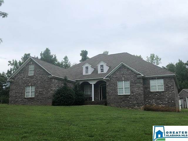 6344 Mays Bend Rd, Pell City, AL 35128 (MLS #886999) :: Bentley Drozdowicz Group
