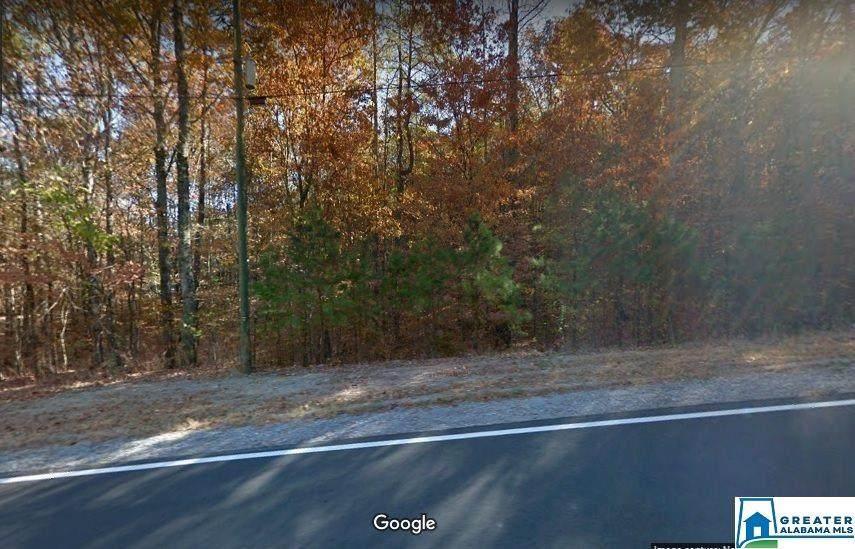8244 Goodner Mtn Rd - Photo 1