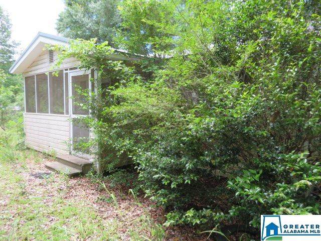 289 Co Rd 321, Lawley, AL 36793 (MLS #888020) :: Josh Vernon Group