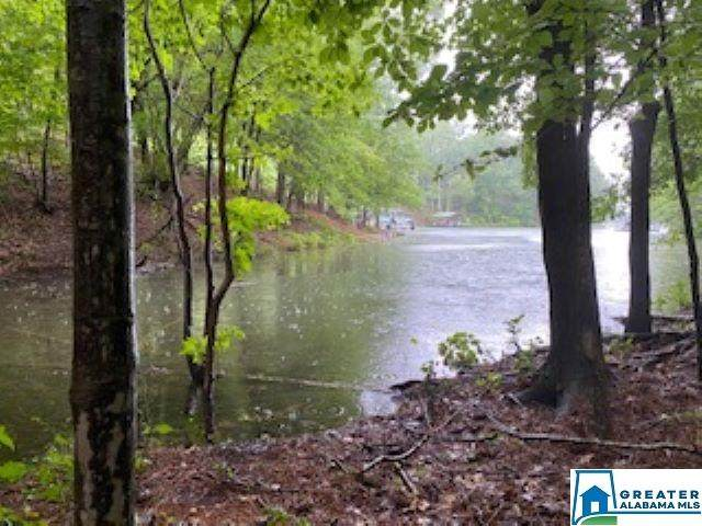 Lot 13 HB Bluebird Dr #13, Wedowee, AL 36278 (MLS #888152) :: Howard Whatley