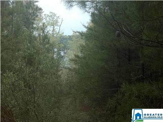 Co Rd 919 #8, Clanton, AL 35046 (MLS #891818) :: Bailey Real Estate Group