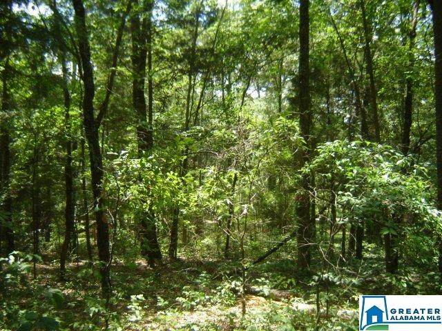 00 Lay Dam Rd #1, Clanton, AL 35045 (MLS #893577) :: Gusty Gulas Group