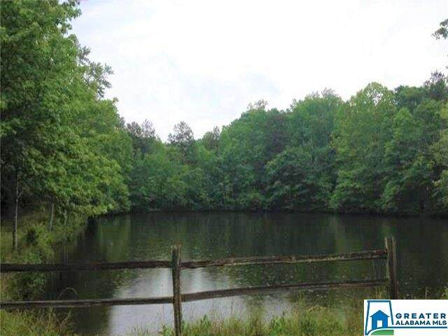 Lot 33 Woodgate Shores Dr #33, Wedowee, AL 36278 (MLS #894874) :: JWRE Powered by JPAR Coast & County