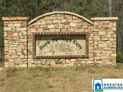 0 Springs Cove Rd #22, Warrior, AL 35180 (MLS #897587) :: Howard Whatley