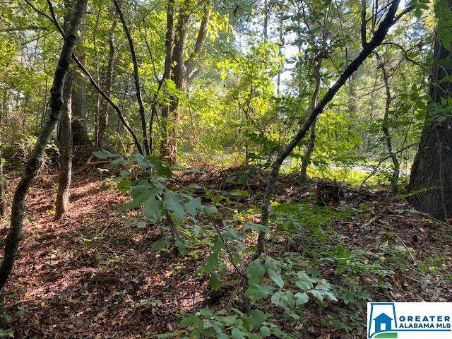 2 acres Co Rd 63 SE #0, Ranburne, AL 36262 (MLS #897987) :: Josh Vernon Group