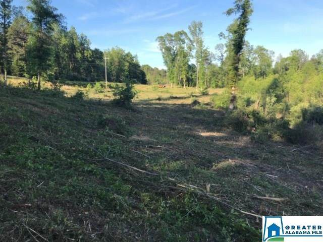 Co Rd #32.100, Thorsby, AL 35171 (MLS #898455) :: Bailey Real Estate Group