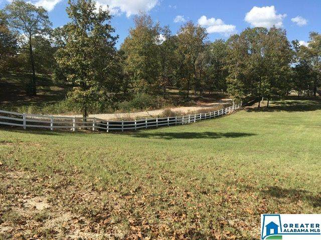 3669 Smokey Rd, Alabaster, AL 35007 (MLS #899454) :: Josh Vernon Group