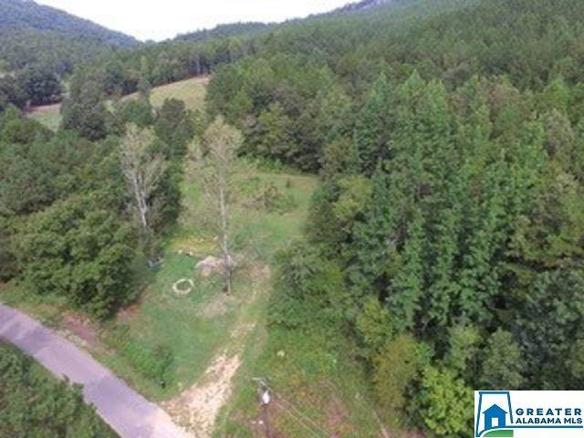 1980 Dripping Rock Rd 20.50 Ac, Piedmont, AL 36272 (MLS #900301) :: JWRE Powered by JPAR Coast & County