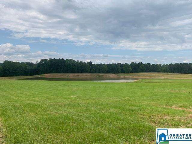 Co Rd 467 135.84 Acres, Vincent, AL 35178 (MLS #900484) :: LocAL Realty