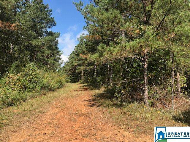 0 Sportsman Lake Rd 154 Acres, Odenville, AL 35120 (MLS #901506) :: Josh Vernon Group
