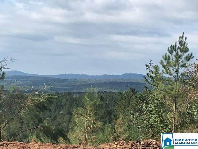 0 Sportsman Lake Rd 83 Acres, Odenville, AL 35120 (MLS #901510) :: Josh Vernon Group