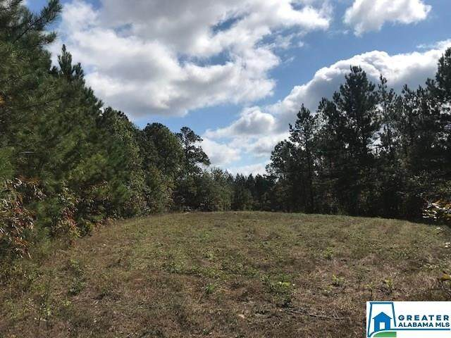 0 Sportsman Lake Rd 73 Acres, Odenville, AL 35120 (MLS #901517) :: Josh Vernon Group