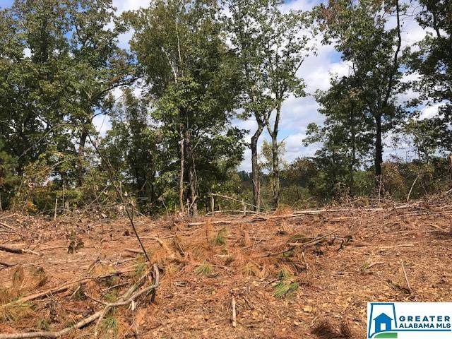 0 Sportsman Lake Rd 112 Acres, Odenville, AL 35120 (MLS #901518) :: Josh Vernon Group
