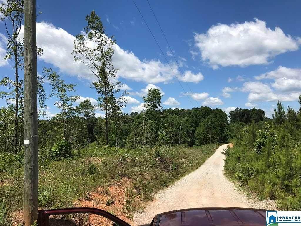 14.85 acres Co Rd 214 - Photo 1