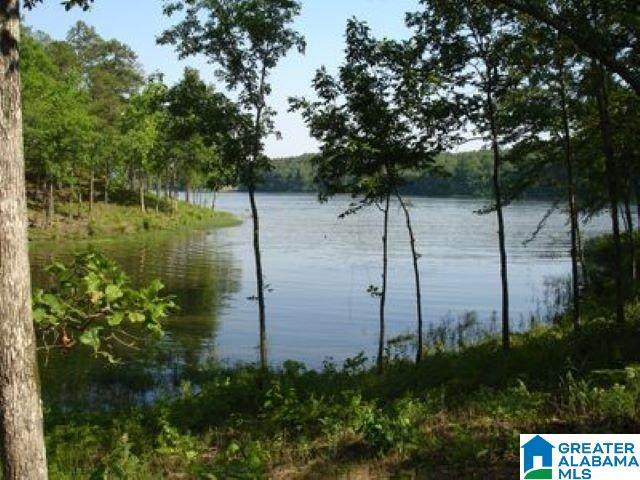 Shore Side Lane Lot 153A, Sylacauga, AL 35151 (MLS #1278061) :: JWRE Powered by JPAR Coast & County