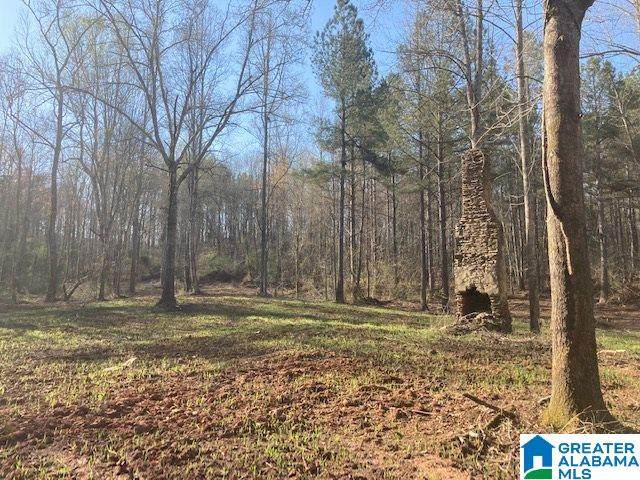 Co Rd 223 52 Ac, Lineville, AL 36266 (MLS #1280658) :: Josh Vernon Group
